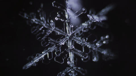Dark background with snowflake that is turn to water drop GIF