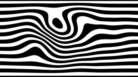 zebra line Stock Video Footage