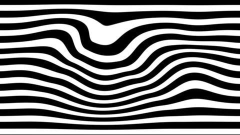 zebra line Animation