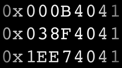 hexadecimal code Animation