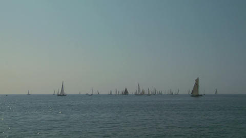 old sail regatta 02 Stock Video Footage