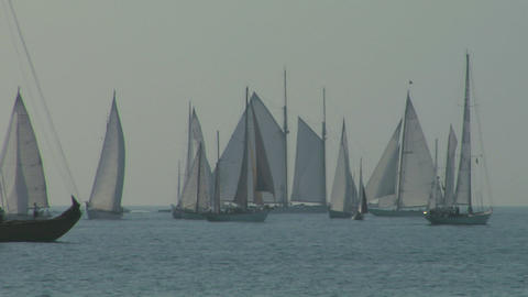 old sail regatta 04 Stock Video Footage