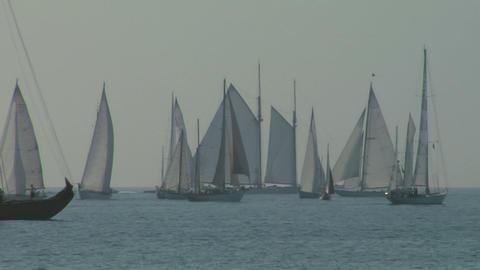 old sail regatta 04 Stock Video Footage