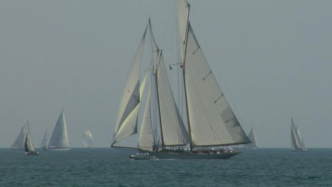 old sail regatta 06 Stock Video Footage