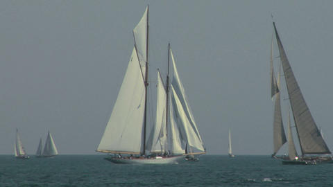 old sail regatta 08 Stock Video Footage