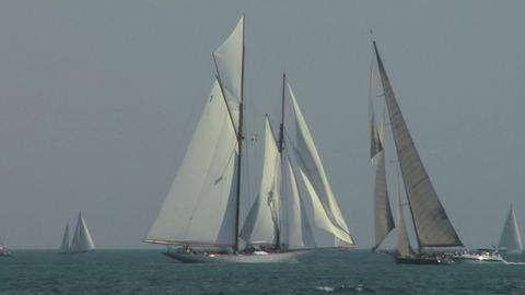 old sail regatta 08 Stock Video Footage