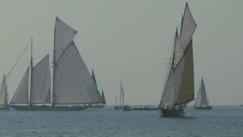 old sail regatta 10 Stock Video Footage