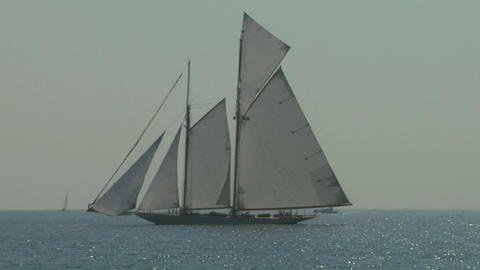 old sail regatta 12 Stock Video Footage
