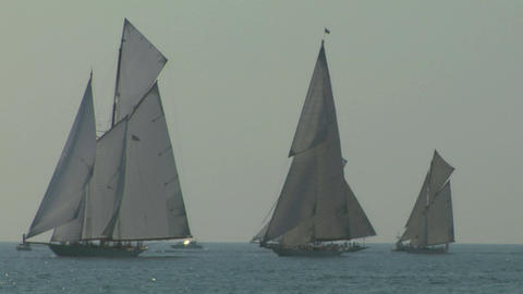 old sail regatta 14 Stock Video Footage