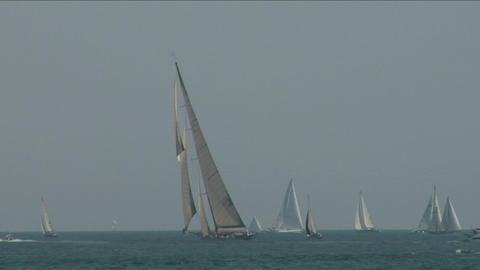 old sail regatta 16 Stock Video Footage