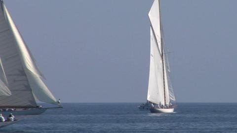 old sail regatta 22 Stock Video Footage