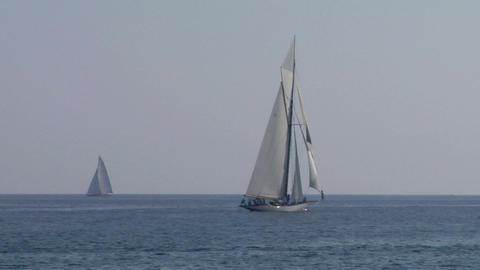 old sail regatta 24 Stock Video Footage