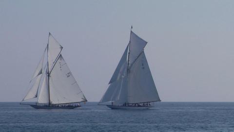old sail regatta 26 Stock Video Footage