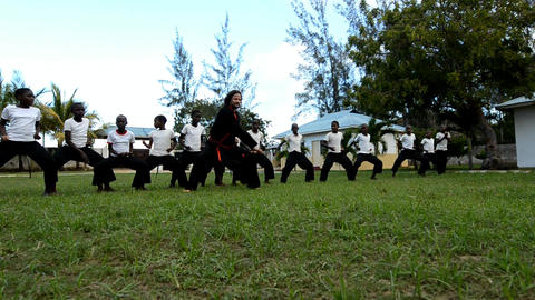 martial arts Stock Video Footage