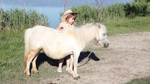 White pony horse and little girl Footage