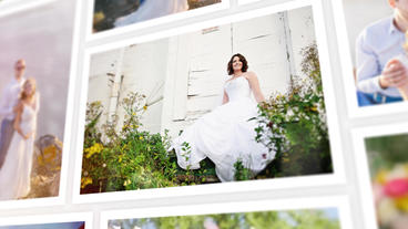 Widding Photo Gallery Plantilla de After Effects