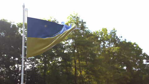 Ukrainian Flag Live Action