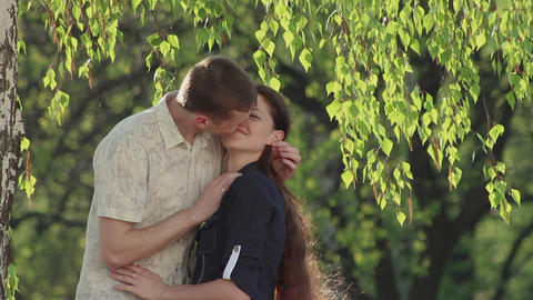 a pair of lovers hugs in the branches of a green birch Footage