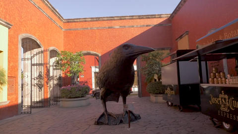TEQUILA, MEXICO - CIRCA FEB 2017 - Large bronze raven or crow statue in the GIF