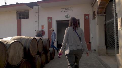 TEQUILA, MEXICO - CIRCA FEB 2017 - Camera follows three tourists walking past GIF