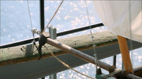 Details of beautiful model of ancient regatta, Maritime museum in Gdansk Footage