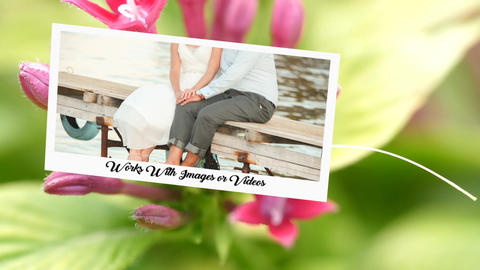 Wedding Photo Gallery-Romantic Wedding After Effects Template