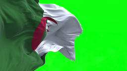 4K Flag of Algeria - Seamless Looping Animation