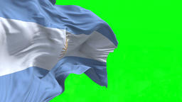 4K Flag of Argentina - Seamless Looping Animation