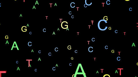 ATCG in DNA.Slow random movement.Black and white alpha matte included Animation
