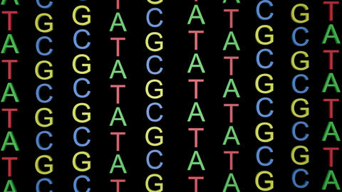 ATCG in DNA.Large letters.Black and white alpha matte included Animation
