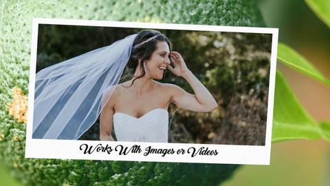 The Story of Love-Lookup Wedding After Effects Template