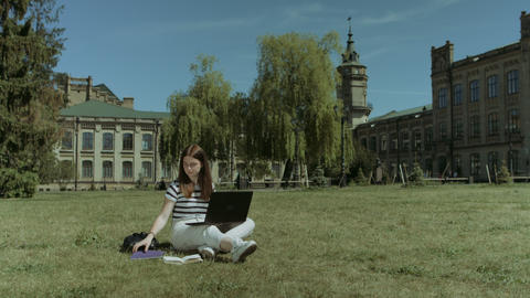 Smart college student preparing to exam on lawn Footage