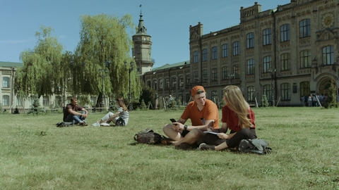 University students studying on campus lawn Footage