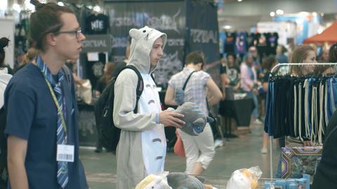 POZNAN, POLAND - MAY 19, 2018. Young man wearing Totoro costume at Pyrkon Footage