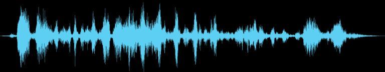 Angry Animals 1 音響効果