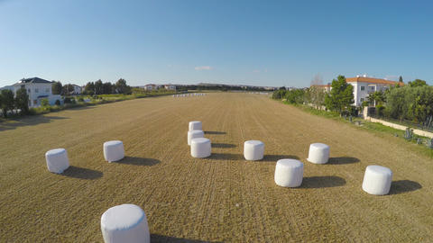 Huge hay packs left in fields after harvesting, farming and agriculture, aerial Footage