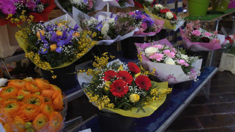 Buyer walking along long market rows with colorful bouquets of flowers, shopping Footage