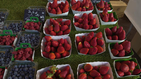 Variety of fresh blackberries and strawberries sold on local fruit market, trade Footage