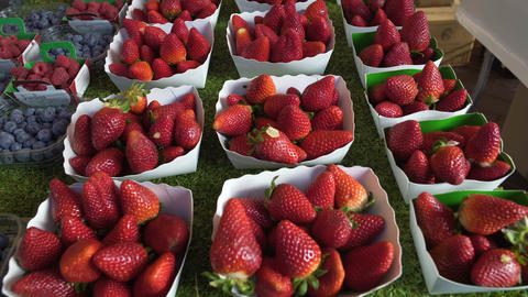 Fresh strawberries from berry plantations sold at organic food store, market Footage