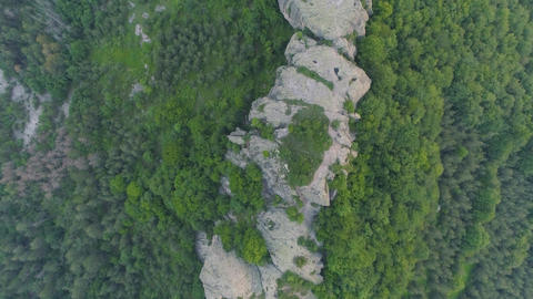 Ancient Rock formation with trees and legends Live Action