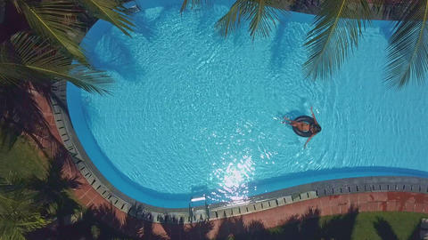 wind shakes palm branches and lady in pool Footage