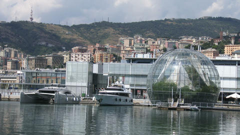 Luxury yachts docked in the old port of Genoa Live Action