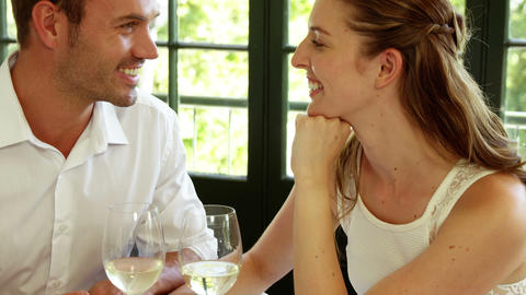Cute couple having a glass of wine Footage