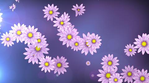 Spring Flowers 4K 01 Vj Loop Animation