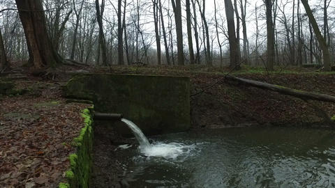 Sewer Canal in the Forest Live Action