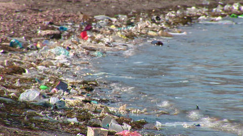 Rubbish at the Seaside Footage