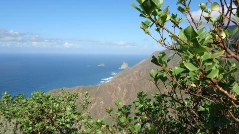 Hills facing the ocean in Tenerife Live Action