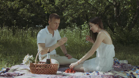 Relaxed couple drinking champagne on picnic Footage