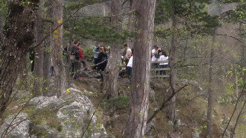 Small Group of People in the Forest Archivo