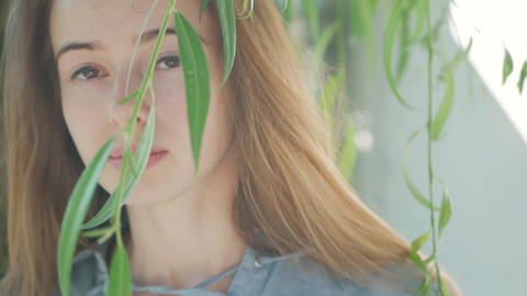 portrait of a beautiful woman with branch of weeping willow Stock Video Footage